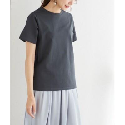 tシャツ Tシャツ 選べるシルケットベーシックTシャツ