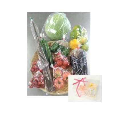 お家で過ごそう! 熊本県産お野菜と『CUBIC FLOWER』セット(ピンク系)