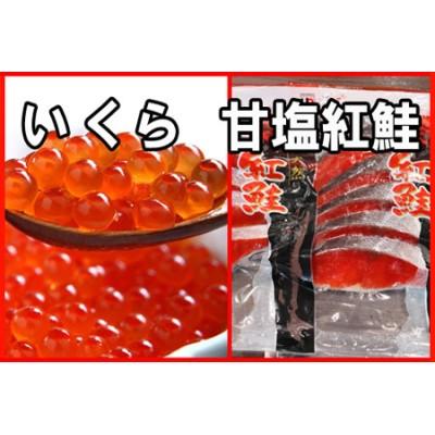 いくら醤油漬け100g×1P、紅鮭切身5切×2P A-30029
