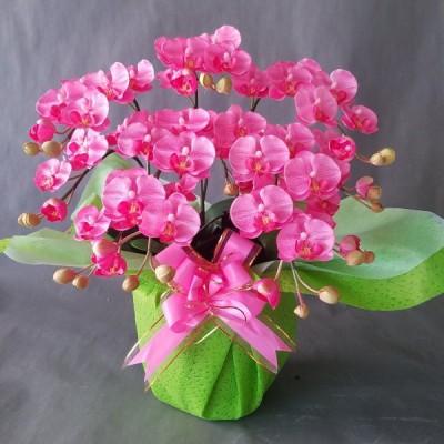 胡蝶蘭S ピンク 5本立 (高さ50cm巾40cm)オリジナル、光触媒、造花,誕生日祝、結婚祝、開店祝、新築祝)。