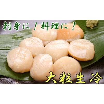 【枝幸ほたて】山武水産 大粒冷凍ほたて貝柱1kg