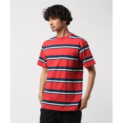 tシャツ Tシャツ MANASTASH/マナスタッシュ MALTI BORDER SS T