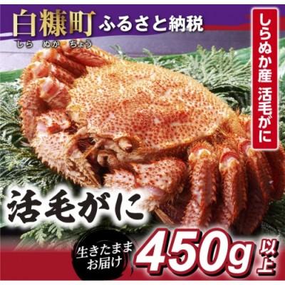 しらぬか産 活中サイズ毛がに【450g以上】(35,000円)