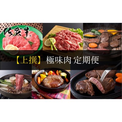 【上撰】佐賀牛・県産和牛 極味肉定期便【毎月1回 計12回お届け】