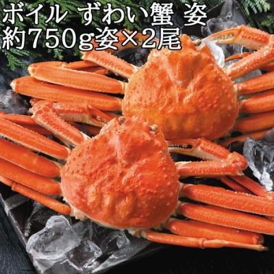 特選 大特価 お取り寄せ ボイル ずわい 蟹 姿 約750g 2尾 ずわいがに ズワイガニ かに カニ グルメ 産地 直送 口コミ セール