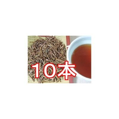 くきほうじ茶・100g×10本