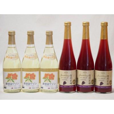 国産甘口スパークリングワイン6本セット 北海道おたる微発泡白×3本 信州産100%巨峰×3本 計500ml×6本
