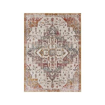 〈新品送料無料〉Multicolor Ottoman Terra Antique Area Rug Soft Carpet Mat for Living Room S並行輸入品