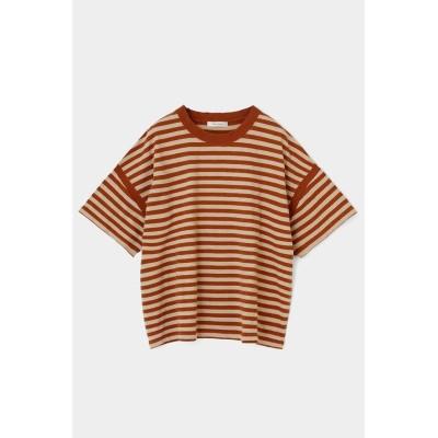 【マウジー】 COTTON SLUB JERSEY Tシャツ レディース BRN FREE MOUSSY