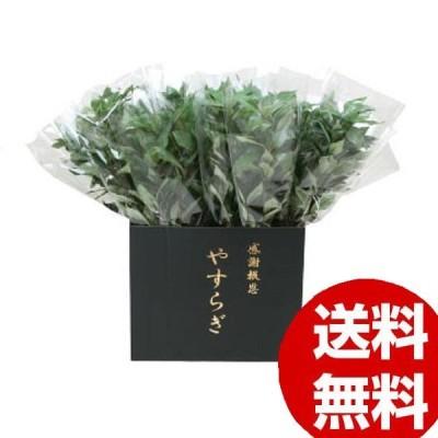 ニューホンコン造花 シキミ ラップ入・展示箱付 グリーン30本入  142501