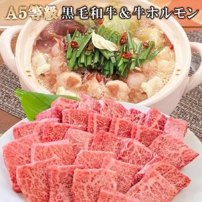 BB-126 A5等級黒毛和牛やわらか焼肉・牛ホルモン(もつ鍋スープ付)