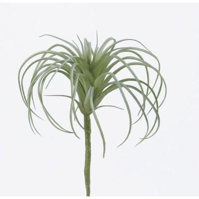 《 造花 グリーン 多肉植物 》◆とりよせ品◆Asca エアプランツ フロストグリーン