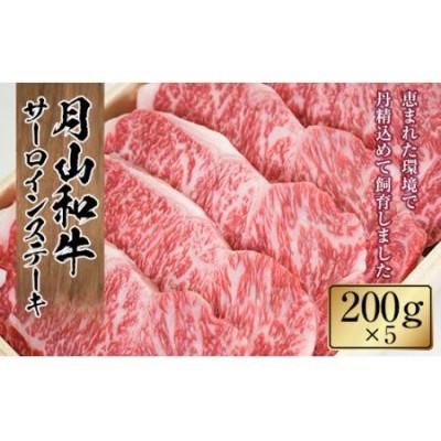 FYN9-323 山形県産黒毛和牛《月山和牛》福寿館 サーロインステーキ 200g×5枚