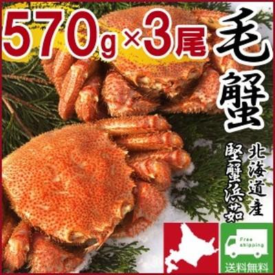 毛ガニ 毛蟹 カニ 蟹 姿  特大 北海道産 ボイル 毛がに 毛蟹 570g×3尾 かに けがに ギフト プレゼント 送料無料 お買い得 かにみそ