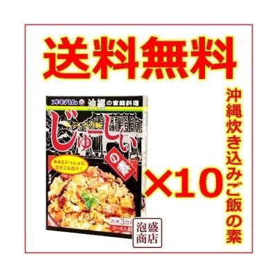 じゅーしぃの素 オキハム 沖縄ハム 180g 10個セット