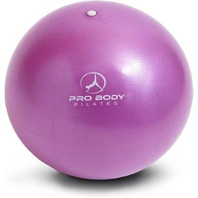 正規輸入品ProBody Pilates ミニエクササイズボール 空気調整器付き約23cm :バレー ヨガ ピラティス(パープル)