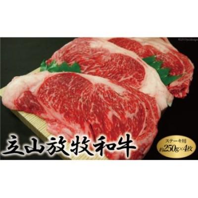 [№5559-0092]立山放牧和牛ステーキ用 1箱約250g×4枚入