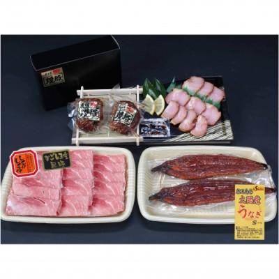 【B02055】鹿児島県大隅産うなぎ2尾・黒豚モモスライス・黒豚焼豚2個セット