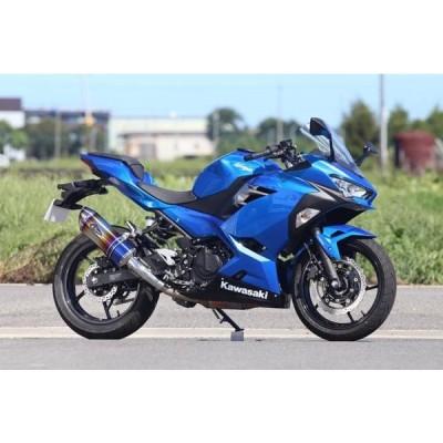 バイク マフラー アールズギア アールズギア リアルスペック S O タイプS DB Ninja250 18- Z250 19- RK33-03SD 取寄品 セール