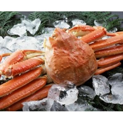 カニ かに 蟹 ボイルずわいがに姿600g1尾 ギフト セット 詰め合わせ 贈り物 贈答 産直 内祝い 御祝 お祝い お礼 返礼品 贈り物 御礼 食品