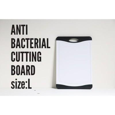 ANTIBACTERIAL CUTTING BOARD L 抗菌まな板 0245-006 1-18
