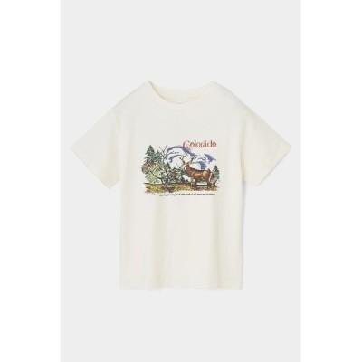 tシャツ Tシャツ COLORADO Tシャツ