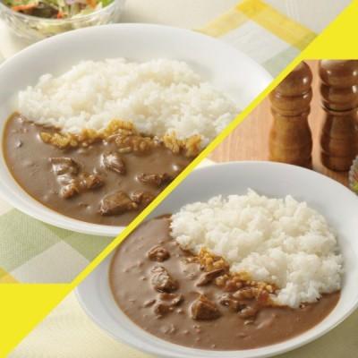 カレー レトルトカレー 大容量1パック240g×10食セット 中京医薬品  薬屋さんが処方した美味しいカレー グレイビービーフ&マサラビーフ 各5食 詰め合わせ
