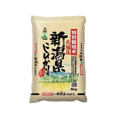 【精米】 新潟県北越後産 特別栽培米白米 こしひかり 5kg 令和2年産