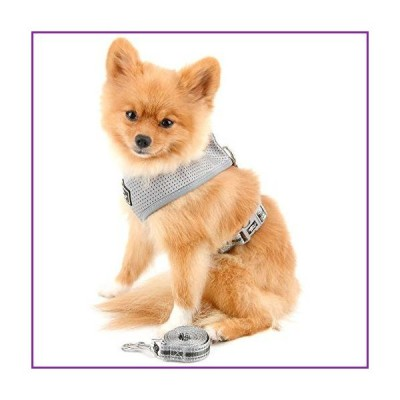 SELMAI Escape Proof Dog Harness Small Breed Soft Mesh Reflective No Pull No Choke Step-in Padded Vest for Small Dogs Cats Puppy Lead for Kit