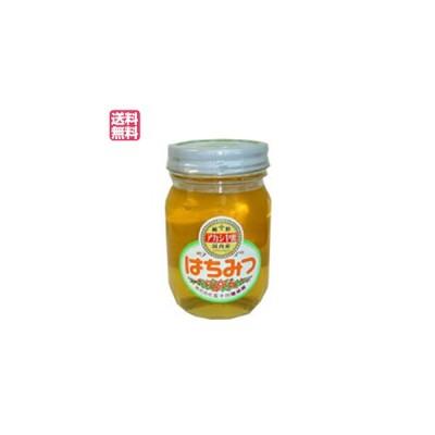 はちみつ 蜂蜜 国産 五十川養蜂園 国産はちみつ アカシア 500g 送料無料