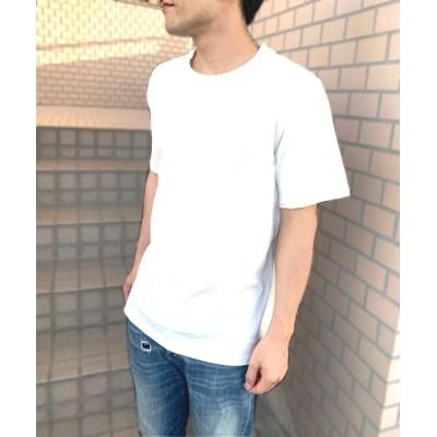tシャツ Tシャツ FRUIT OF THE LOOM 7oz 天竺 Tシャツ