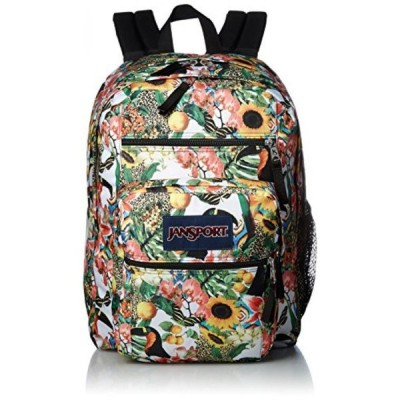 2 in 1 PC JanSport Big Student Backpack