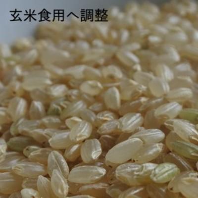 <オプション>玄米食用調整