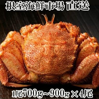 根室海鮮市場ボイル毛がに700~900g×4尾 D-28003