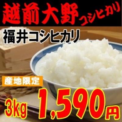 越前大野コシヒカリ(福井コシヒカリ)3kg もっちり・甘め 米/お米/30/少量/程よい味 玄米,白米,分搗き選択可能