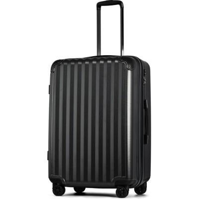 【タビバコ】 スーツケース LLサイズ 静音8輪キャスター 軽量 大容量 拡張 TSAロック 受託手荷物無料 キャリーバッグ キャリーケース? ユニセックス その他 L tavivako