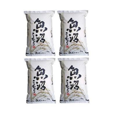 精米 新潟県 魚沼産 コシヒカリ 令和2年産 新米 白米 米 コメ (20?5?×4袋)