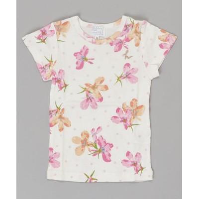 HAKKA / コットンキャンディシリーズ アズーロドットプリント半袖Tシャツ KIDS トップス > Tシャツ/カットソー