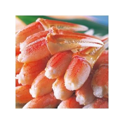 かに カニ 蟹 ズワイ ずわい ボイル ズワイガニ 爪 爪肉 たっぷり 500g カニ鍋 天ぷら お歳暮 プレゼント ギフト 贈り物 送料無料