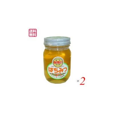 はちみつ 蜂蜜 国産 五十川養蜂園 国産はちみつ アカシア 500g 2個セット 送料無料