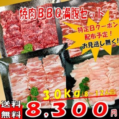 肉 バーベキュー 食材 牛肉 焼肉セット BBQ 肉 ハラミ カルビ バラ 豚トロ バーベキュー 肉 BBQ食材セット BBQ 食材 焼肉 豚肉 牛丼 3kg 8〜12人前