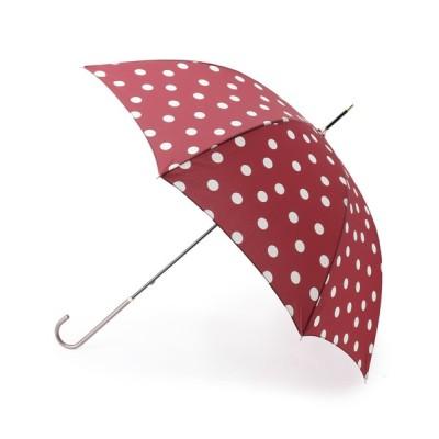 傘 because ポルカドット柄晴雨兼用長傘
