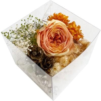 クリアリウム キット 花材 リースアソート キューブ オレンジ 固まるハーバリウム