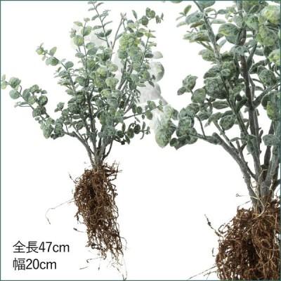 造花 人工観葉植物 フェイクグリーン ユ-カリルーツ(MDY116)