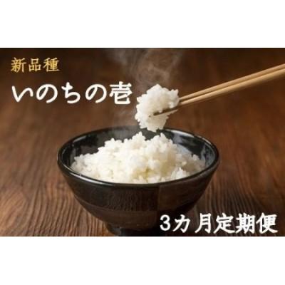 [0925]【新品種】【先行予約】長野県飯綱町産のお米 いのちの壱5kg【3カ月定期便】(令和2年産)
