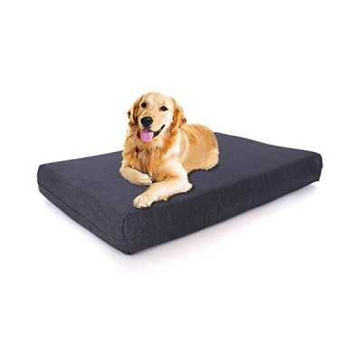 Back Support Systems Dog Bed, Lucky Dog, Gel Memory Foam, Large, Blue