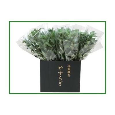 送料無料 ニューホンコン造花 シキミ(ラップ入・展示箱付)グリーン30本入  142501|b03