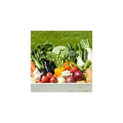 野菜 母の日 ギフト  九州野菜詰め合わせ    母の日 ギフト  メッセージカード対応