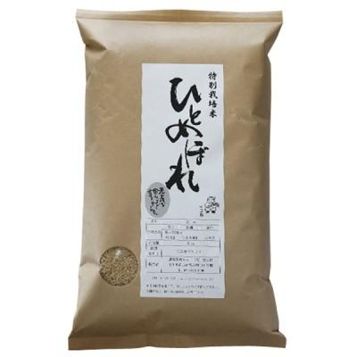 お歳暮 御歳暮 石川県産 2020年産 新米 特別栽培米 ひとめぼれ 玄米5kg 産地直送 美味しい