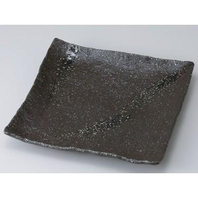彗星石目9.0正角皿